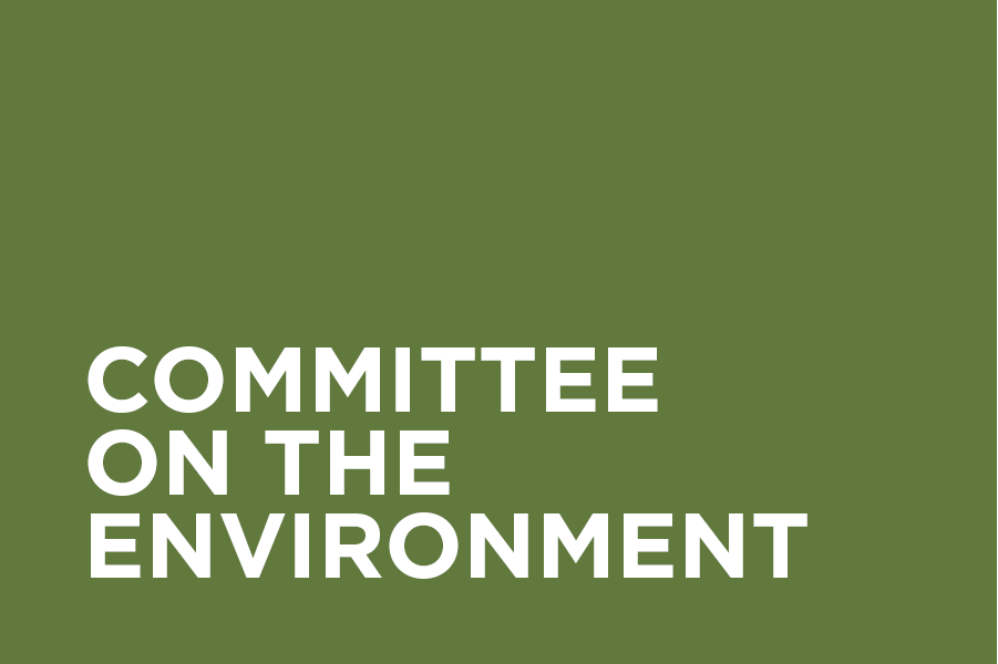 The Committee on the Environment (COTE) focuses on information and resource sharing among professionals in the local sustainable design community through monthly presentations, case studies, discussions and tours.