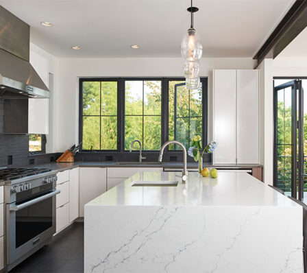 Capitol-Hill-Old-New-Fusion_kitchen