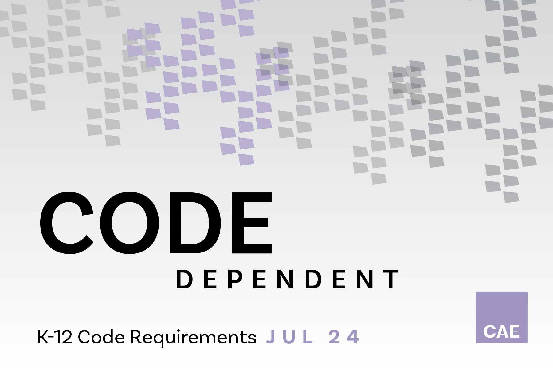 This page is intended only for participants of 2019 Code Dependent: K-12 Code Challenges & Opportunities