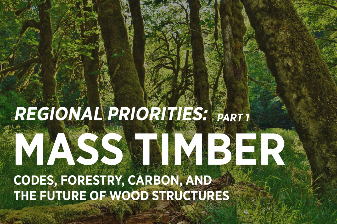 Codes, Forestry, Carbon, and The Future of Wood Structures