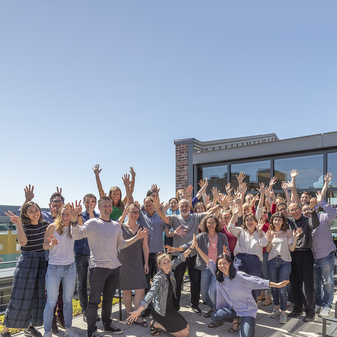 Group photo outdoors in clear-blue sky; multi-gender group with hands raised in celebration on a rooftop